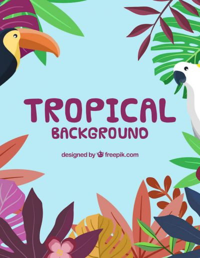 Tropical-Background-21